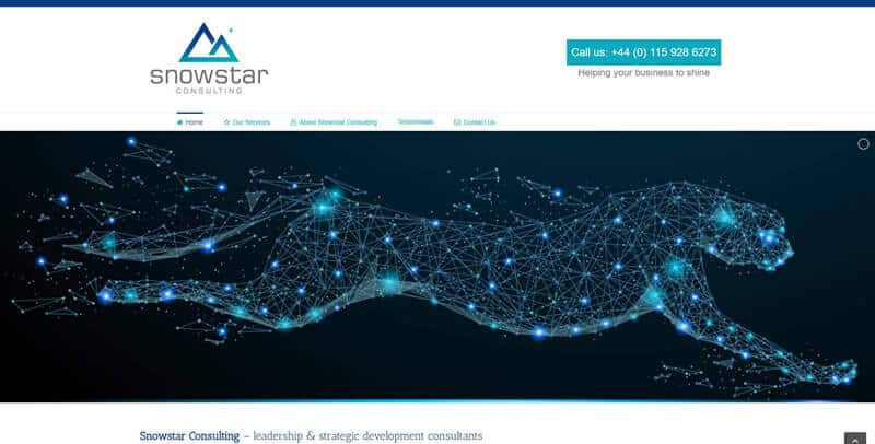 Snowstar Consulting WordPress website